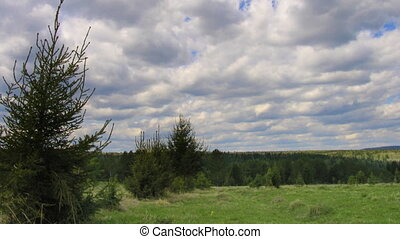 timelapse clouds above summer field and forest. Progressive...