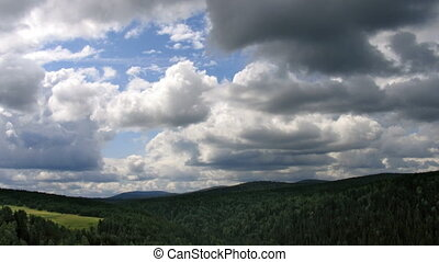 timelapse clouds forest top view