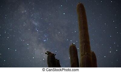 timelapse, de, estrelas, à noite, tiro, em, super, alto, qualidade, 4k, resolução, (4096x2304).