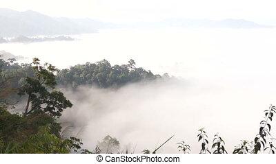 Timelapse floating fog landscape