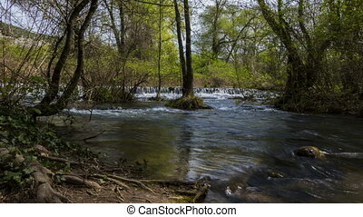 Timelapse forest river - The river flows through the forest...
