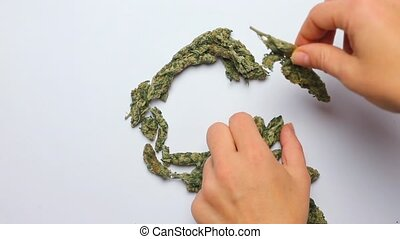 timelapse, hands make the letter S of the English alphabet from cannabis