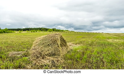 timelapse haymaking, grass mowed on hay, a sheaf of straw in the field, floating clouds over the fields