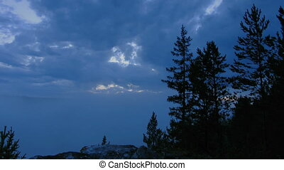 timelapse night trees, clouds and f