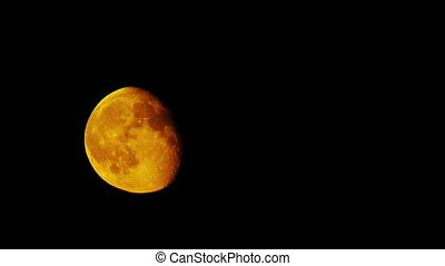 Timelapse of 80% illuminated super moon. Yellow moon moving from bottom to top of view.