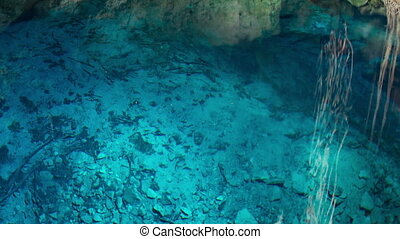 timelapse of a cenote in mexico. these sinkholes are one of the natural wonders of the world