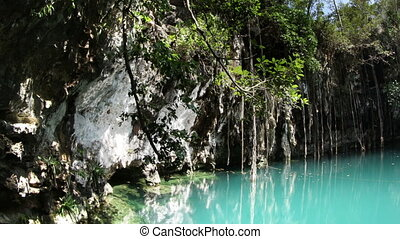timelapse of a cenote in mexico. these sinkholes are one of...