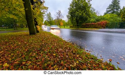 Timelapse of cars passing by and grass covered with colorful autumn fall leaves