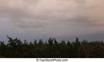 Timelapse ominous clouds and lightning over a wood.