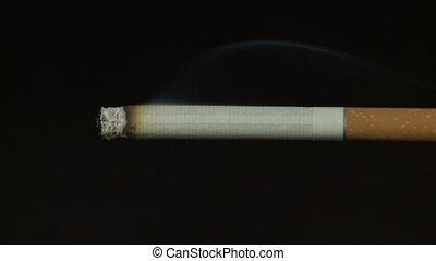 Timelapse video of burning cigarette