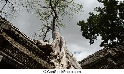 timelaspe of clouds passing over ta phrom