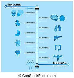 timeline, medicinsk, infographic, hälsa