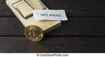 timoroso, appuntato, non, trappola, bitcoin., topo, word: