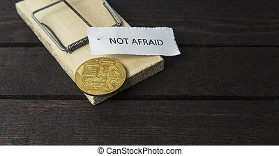 timoroso, tafanario, appuntato, bitcoin., trappola, non, topo, word: