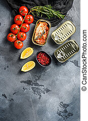 Tin can of mackerel, Scombridae opened and closed cans no label, with organic vegetables herbs and lemons top view space for text or price vertical
