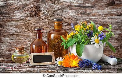 Herbal medicine. Medicinal plants