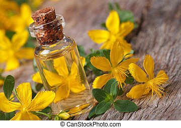 tincture of St. John's wort in a glass bottle macro ...