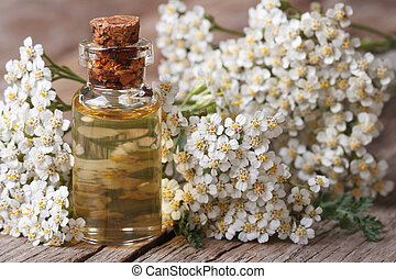 Tincture of yarrow in the bottle close-up horizontal -...