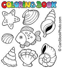 tinja livro, com, seashells