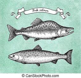 tinta, skicc, közül, rózsaszínű, púpos ember, salmon.