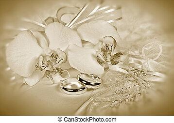 tintahal, esküvő