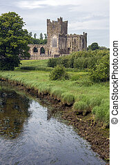 Tintern Abbey - County Wexford - Ireland. - Tintern Abbey -...