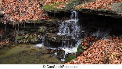 Tiny Autumn Cataract Loop - Seamless loop features water...
