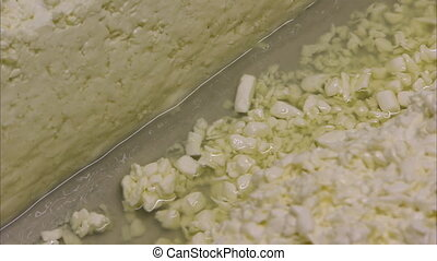 Tiny cheese bits from the processing - A close up shot of...