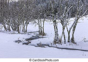 Tiny creek in winter.