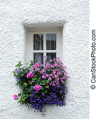 Tiny Scottish window with flowers