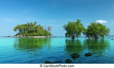 Tiny, Tropical Island in Southern Thailand with Mangrove Trees.