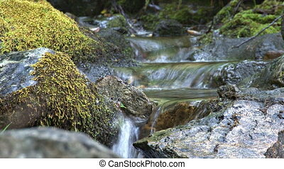 Tiny Waterfalls - Small waterfalls in series down mossy...