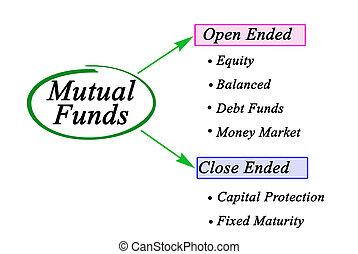 tipi, fondi, sei, comune