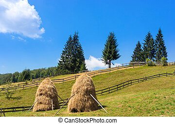 Tipical hay bale in Transylvania,Romania