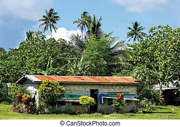 tipico, fijian, casa, in, lavena, villaggio, su, isola taveuni, figi