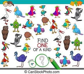 tipo, achar, pássaros, caráteres, um