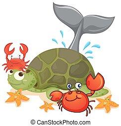 tipo, diferente, animais, mar