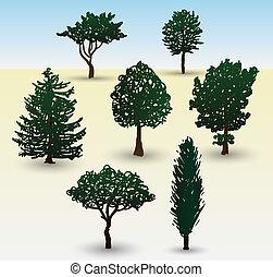 tipos, de, árbol, ilustración