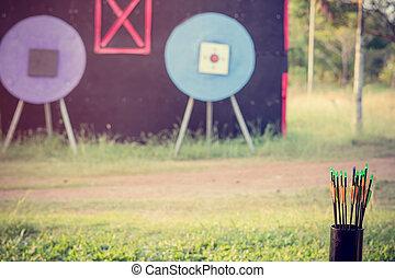 tir arc, formation, utilisé, frémir, flèches, parcs, amusement