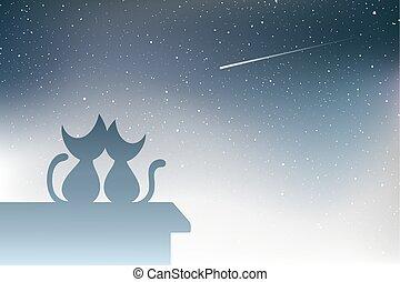 tir, chats, étoile, toit, gentil