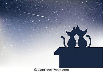 tir, chats, étoile, toit
