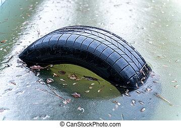 Tire Frozen in water.