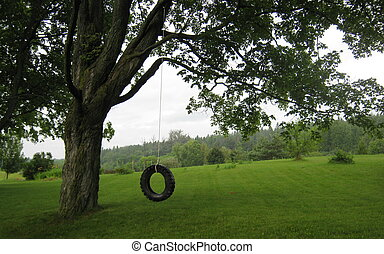 A childhood classic, a tire swing hung from a tree branch, near Uxbridge, Ontario, awaits its first swinger of the day.