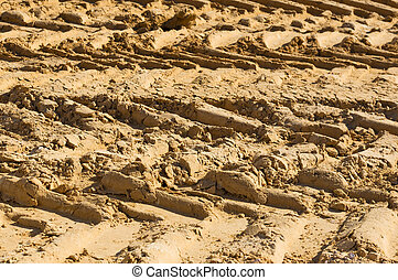 tire tracks of a large truck on the sand