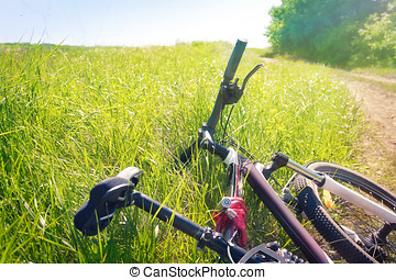 Tired bicycle lying in the grass at the roadside
