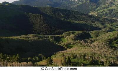 tiro aéreo, de, floresta verde, e, montanhas, com, rastro