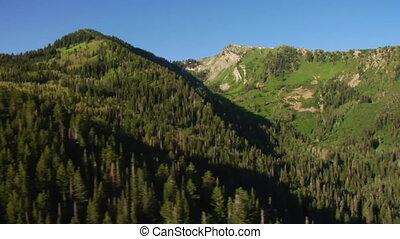 tiro aéreo, de, floresta verde, e, montanhas