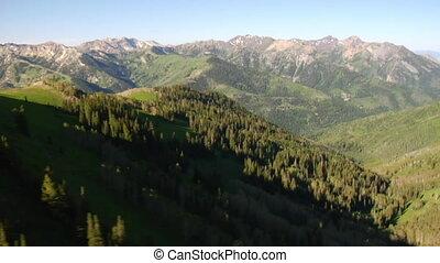 tiro aéreo, de, floresta verde, e, montanhas, revelar
