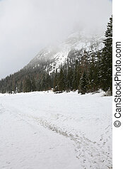 tirol, itália, inverno, pragser, neve, wildsee, sul
