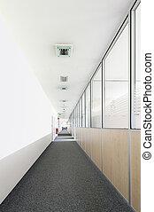 tissu, bureau, très, long, verre, murs, couloir, bois, moquette